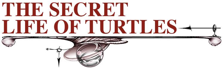 The Secret Life of Turtles