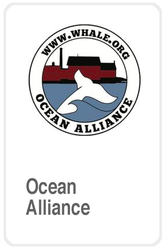 Ocean Alliance Foundation