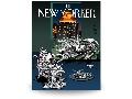 12 - New-Yorker